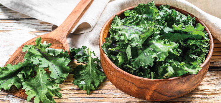 6 Things To Know If You Wonder How To Freeze Kale   ultimatefoodpreservation.com