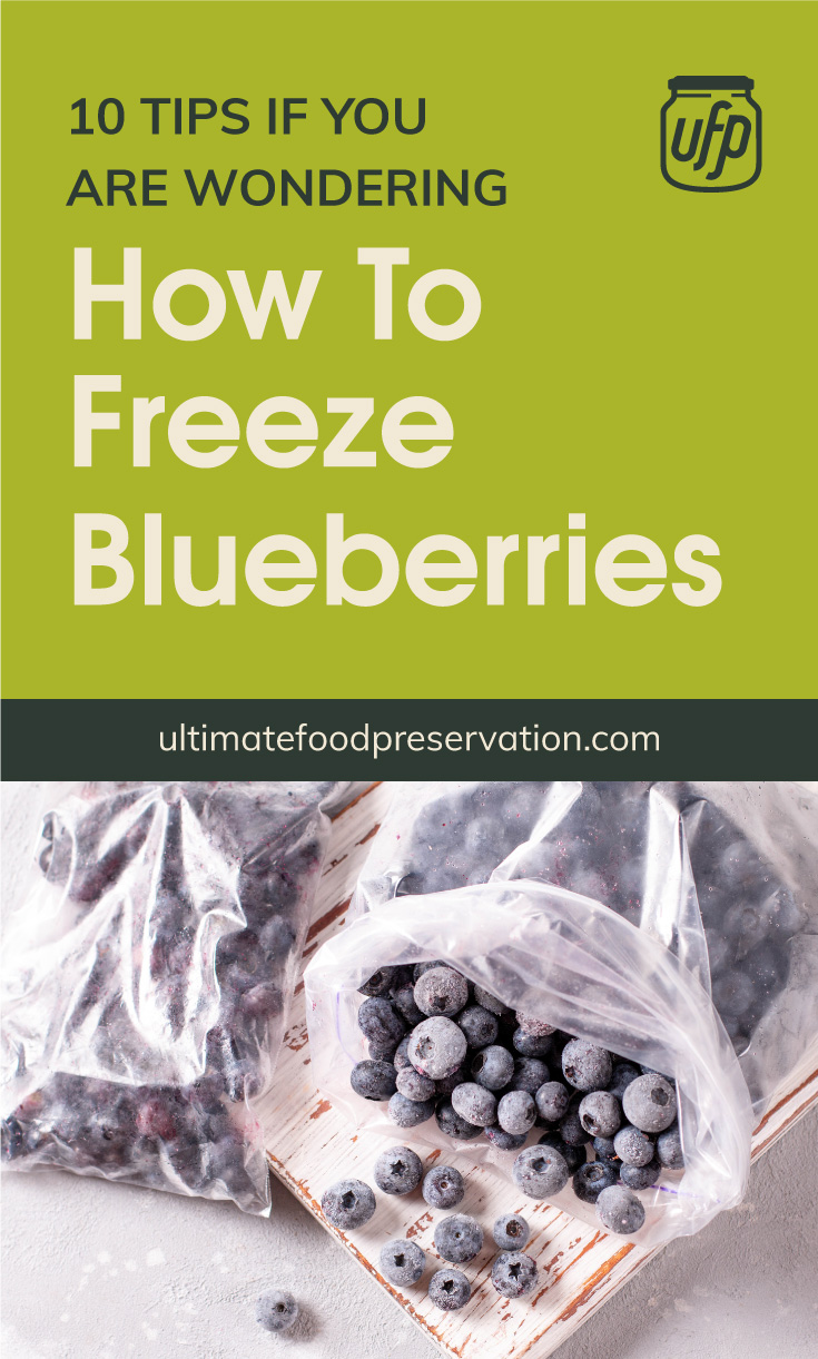 """Text area that says """"10 Tips If You Are Wondering How To Freeze Blueberries, ultimatefoodpreservation.com"""" followed by frozen blueberries on a plastic bag"""