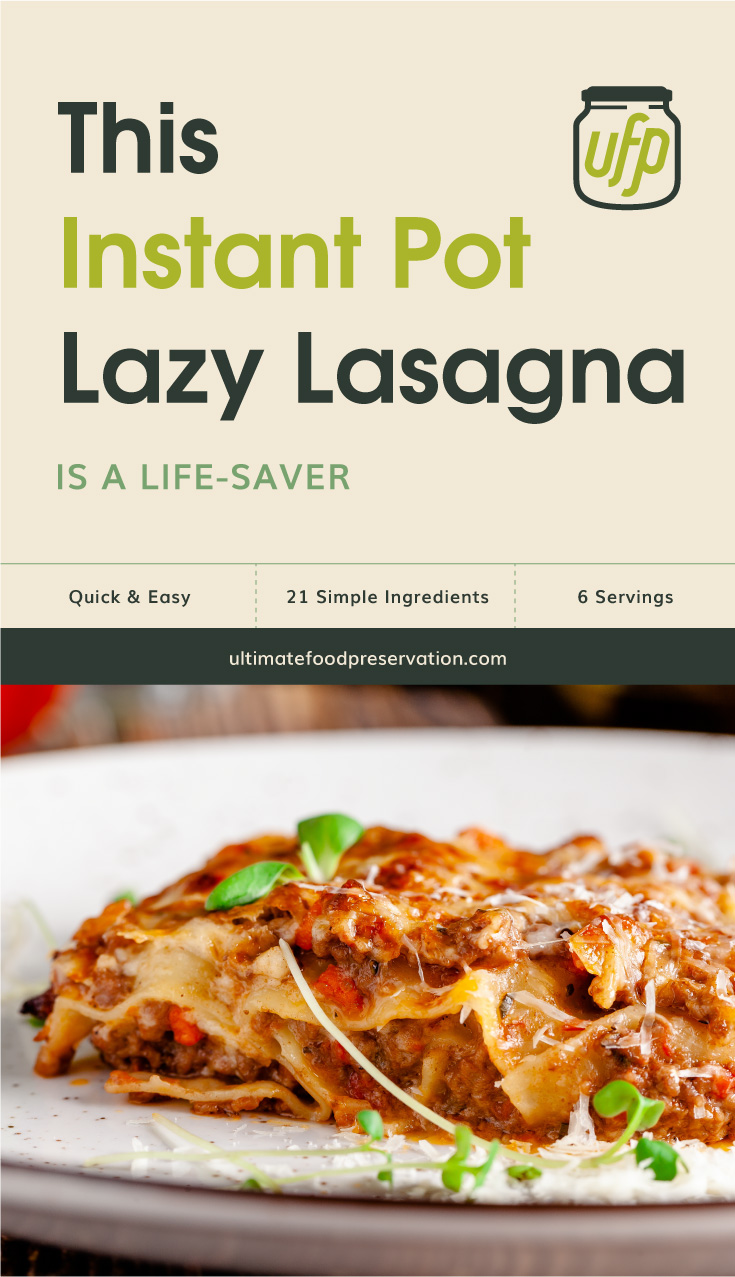 """Text area that says """"This Instant Pot Lazy Lasagna Is A Life-Saver, Quick & Easy, 21 Ingredients, 6 Servings, ultimatefoodpreservation.com"""" followed by Italian lasagna with minced meat"""