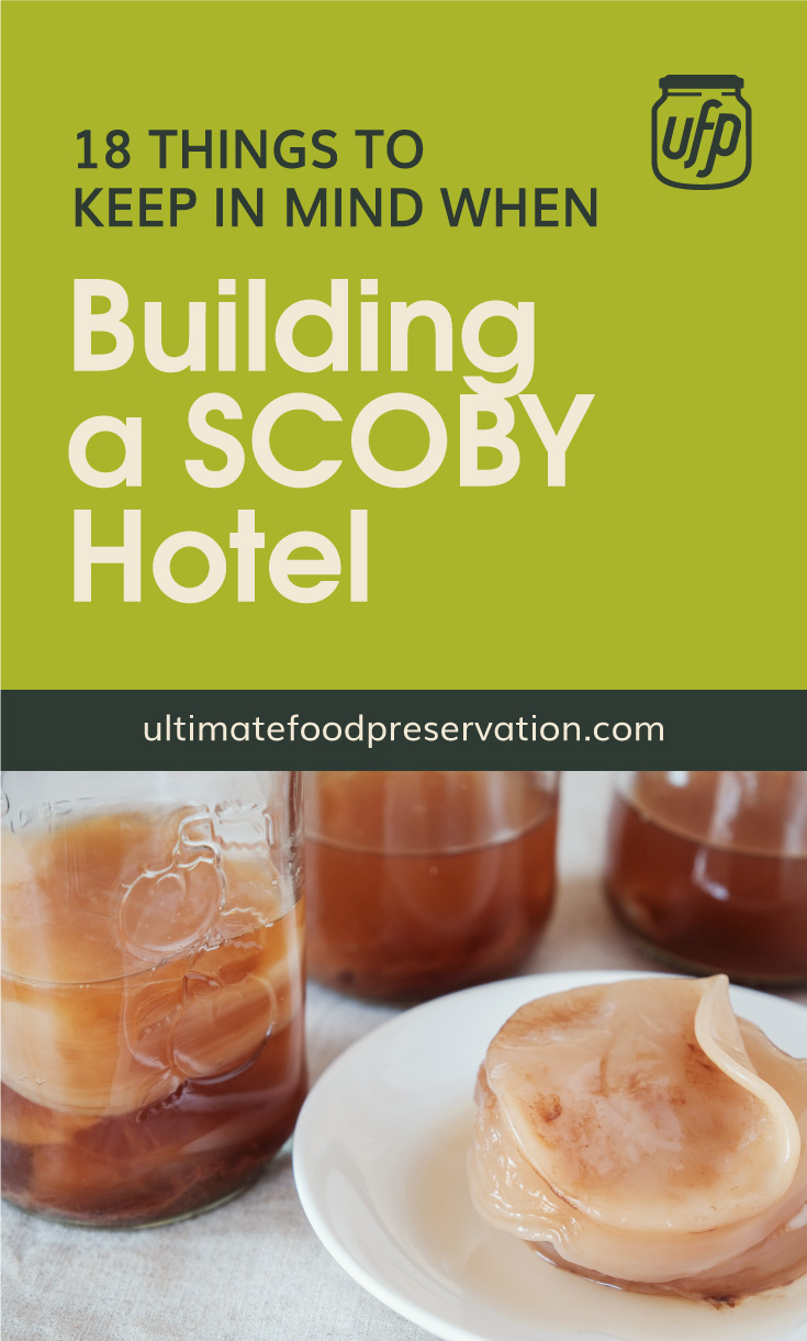 """Text area that says """"18 Things To Keep In Mind When Building a SCOBY Hotel, ultimatefoodpreservation.com"""" followed by a photo of  scoby on a plate surrounded by scoby hotels in jars"""