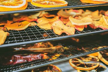 Drying Food in Oven vs. Using a Dehydrator: All You Need to Know | ultimatefoodpreservation.com